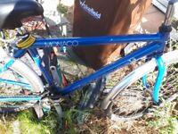 Gents bike for sale fair condition