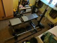 York Bench - cast iron weights - squat rack
