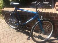 Adult mountain bike large frame excellent condition