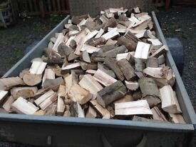 Hardwood logs ready to burn