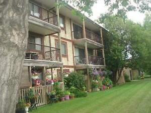 1 Bdrm Apt. Available Now - Close to Yellowhead Trail!