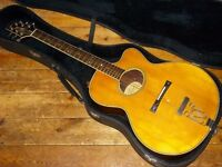 Aria Elecord AE-90 archtop electro acoustic Gypsy jazz guitar 1979 made in Japan