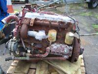 Euro cargo 6 cylinder diesel engine