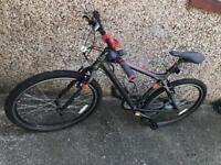Bicycle Carrera Ltd edition
