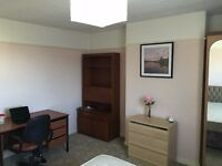 Spacious Double Room for a Professional!