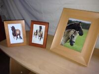 3 horse prints in frames see photos picture equestrian mantlepiece decoration