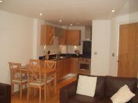 Large 1 Bedroom Apartment overlooking the Dock in Magellan House - NO DSS NO CHILDREN NO PARKING