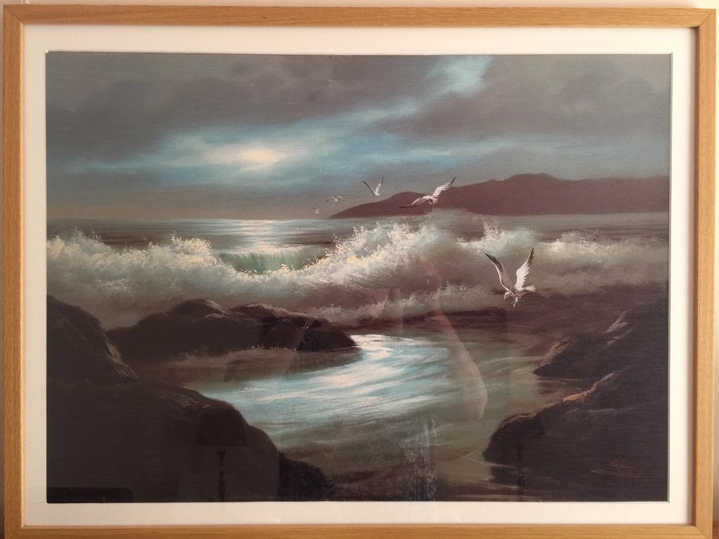 Picturein Lytham St Annes, LancashireGumtree - Nice print of birds and the sea at night. Nice size. Nice frame. Move forces sale