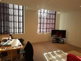 1 Bed city center Apartment - must be seen it is huge!