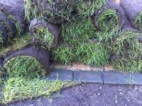 Turf approx 35 square metres