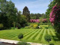 Reliable garden services
