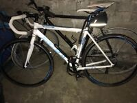 Men's carrea road bike