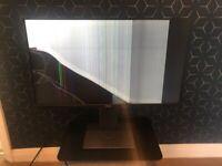 """Dell Monitor 27"""" - broken"""