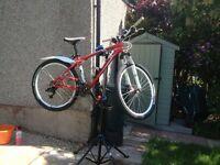 Specialized Hardtail Bike