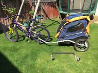 Phillips double child's cycle trailer