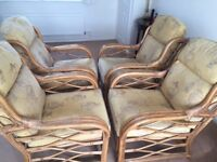 4 Cane Conservatory Chairs