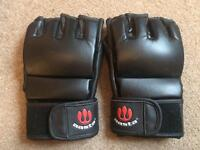 Aasta Leather Grappling Gloves