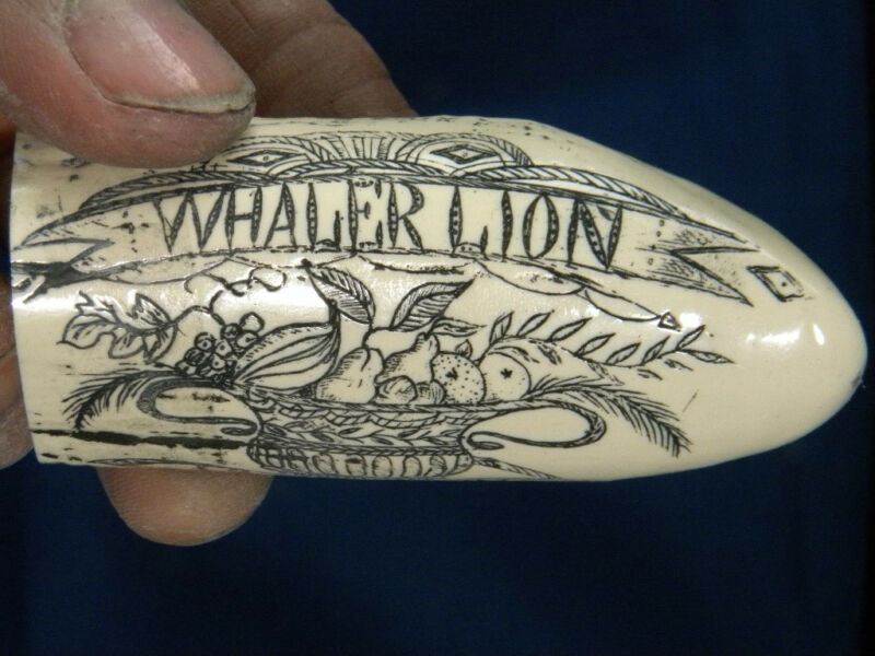 """Scrimshaw Sperm whale tooth resin replica /""""EL PASO/"""" 8 inch  GREAT DETAILS!"""