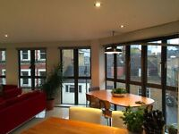 A spacious bright and modern 3rd floor one bedroom apartment in Hoxton Point Rufus Street N1