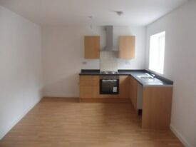 1 BEDROOM FLAT TO LET, HANDSWORTH WOOD, NEWLY RENOVATED