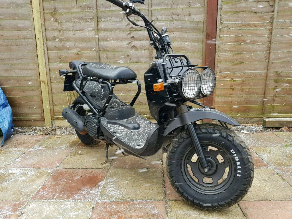 honda zoomer 50cc uk battle scooter in hatfield. Black Bedroom Furniture Sets. Home Design Ideas