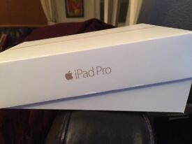 """IPad Pro 9.7"""" - WiFi cellular - 256 GB - rose gold - with leather case 7 months old!"""