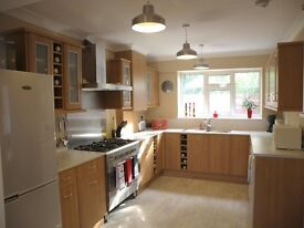 LOOK AT THIS - Lovely clean and tidy house!