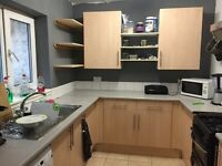 Small room in shared house for rent, bills included (incl cleaner)