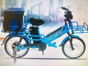 "Promotion! 20"" High Quality Double Batteries Long Rang(120km-150km) ebike, Electric Bike $1999(was$2499)"