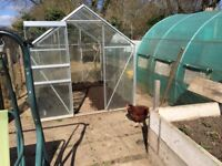 8 x 6 Glass Greenhouse