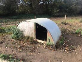 Pig sheep ark