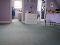 Large bedroom carpet light-mid green Wilton. Heavy domestic quality. Can be viewed.