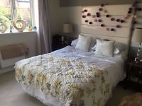 Double Bed and Mattress (Great Condition)