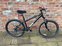 GIANT SPT Bike