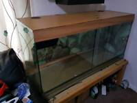 Glass vivarium free to a good home.