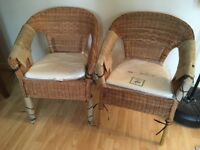 Chairs - IKEA AGEN - Brand New - with cushions