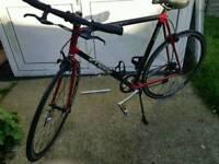Trek racer bike