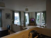 3 bedroom HMO modern bright, homely flat for rent either short or long term