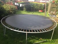 Large (12ft) trampoline, free to a good home