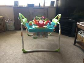 First steps Jumperoo