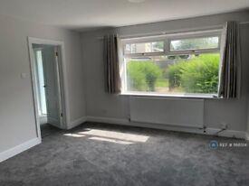 3 bedroom house in Boytons, Basildon, SS15 (3 bed) (#1168514)