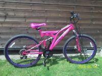 Pink Mountain Bike.
