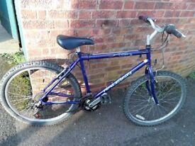 "men's raleigh spirit bike 26"" wheels"