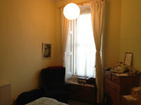 Flatmate wanted for superb Canaan Lane flat - available July 1st.