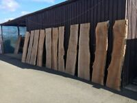 Scottish Hard Wood Timber For Sale, Bespoke Furniture Oak, Elm, Yew, Beach, Ash etc Timber, plank.