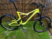 Specialised stumpjumper mountain bike