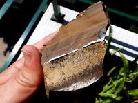 Minerales,fantasticas Betas De Opalo En Su Matriz Areniscosa Australia - 7a16, -  - ebay.es