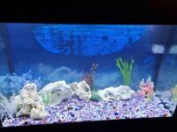 Fish Tank Aqua One 200 Ltr with LED lighting