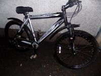 TIGER INCLINE mountain bike twin disk brakes