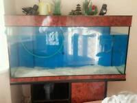 Aquamedic 120 fishtank